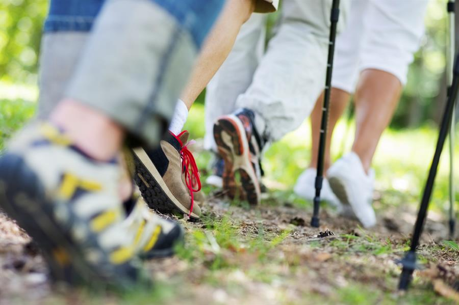 Reasons to Join a Walking Group